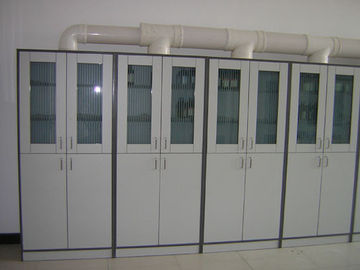 Customized Tall Storage Computer Lab Furniture , 2 Door Chemical Storage Cabinet